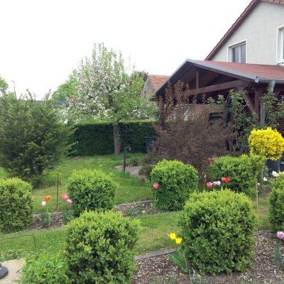 Garten 19